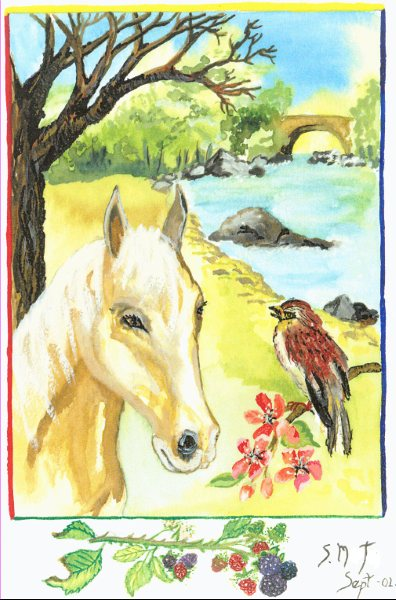 Watercolour Paintings ~ Auragraphs~ (1/6)