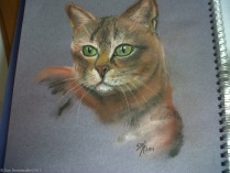 Cat in Pastels