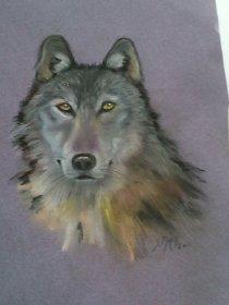 Wolf Totem Pastel sketch