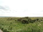 A meadow cliff topwalk