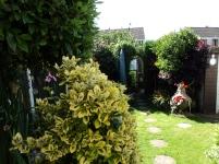 Garden view 2012