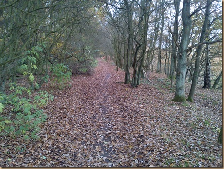 Autumn Walks and Winter Warmers (2/6)