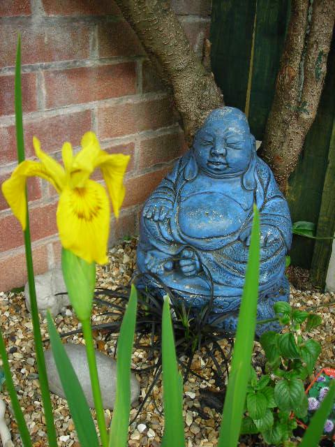 Buddha and Iris