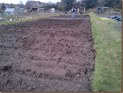 In the front are 6 rows of Potatoes, there are 4 more rows to put in.