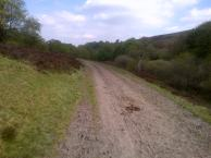 Walking an old coach path along Ramsley Moor.