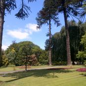 Spectacular gardens around Sewerby Hall