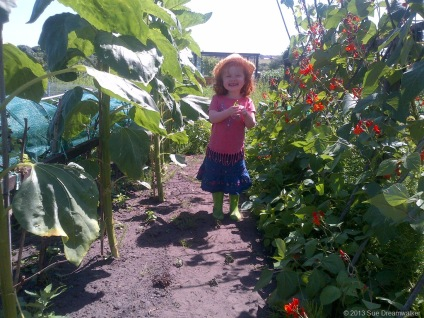 Our Granddaughter eating peas walking along the Bean row