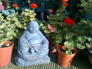Geraniums with Buddha