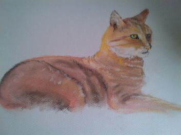 Half finished, in Pastel