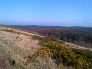 My walk looking out over some of Robin Hood Country