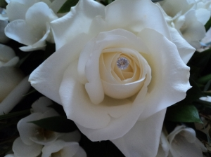 Jewelled Rose