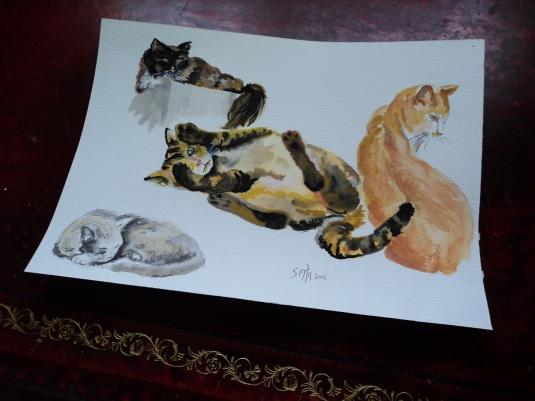 Watercolour Cat Moods Art by Sue