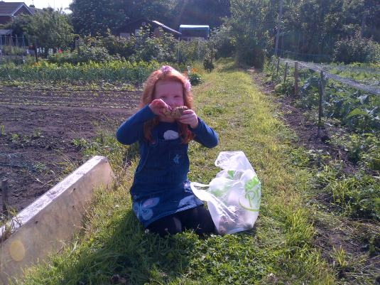 My Granddaughter showing the first lifted New Potatoes
