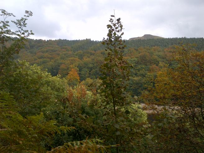 Autumn Colours around Ladybower