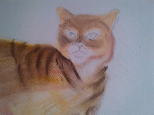 Cat pastel starting out