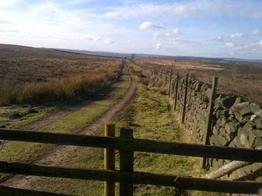 Pathway on Moorland