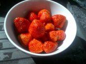 Strawberries..