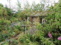 Hay Garden A show garden